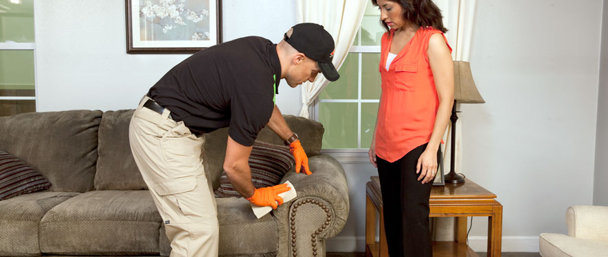 Stamford, CT carpet upholstery cleaning