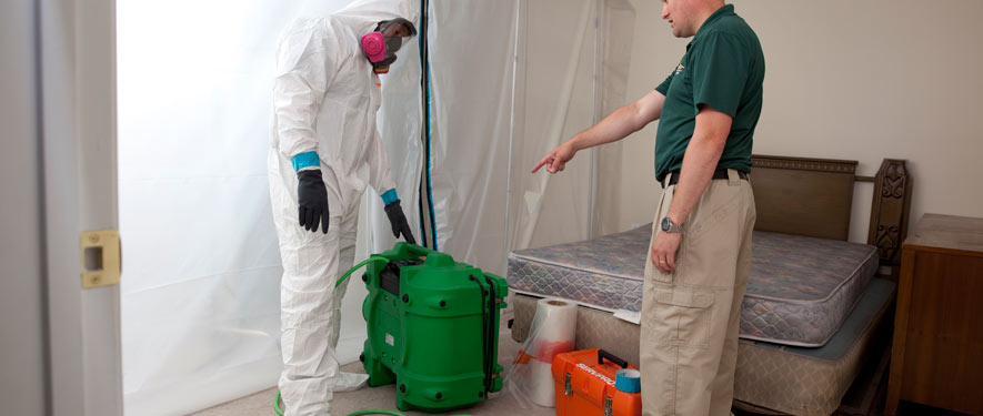 Stamford, CT mold removal process